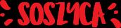 Kajaki, Spływy kajakowe – Soszyca na Kaszubach